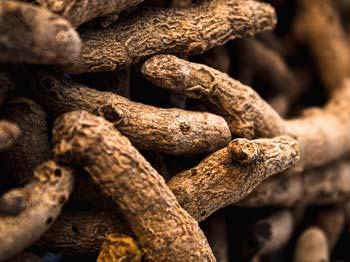 Heilrezepte mit Kurkuma aus dem Heilpflanzenlexikon von Dr. med. dent. Nicole Wagner